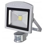 LED-Strahler mIR Dahlem 20SCI, 20W, 6500K, silber