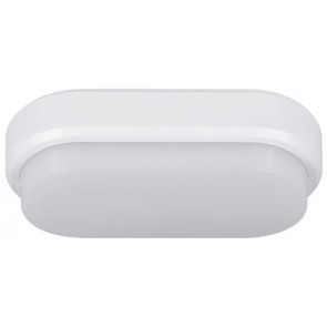 LED WL-DL Bulkhead Oval white