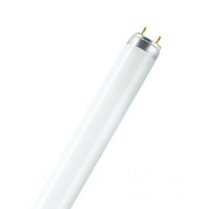 Lumilux T8 G13 58W 840