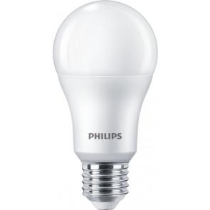 LED ersetzt 100W, E27, warmweiß (2700 Kelvin), 1521 Lumen, matt