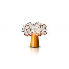Clizia, Höhe 25 cm, Orange