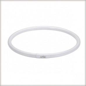 Leuchtstofflampe T5, 2GX13, 55 W, weiß